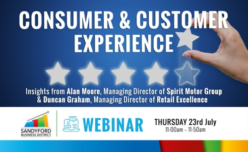 Consumer and Customer Experience Webinar