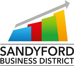 Sandyford Business District Strategic Study and Action Plan